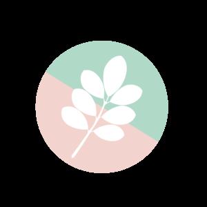 Plantifulplan